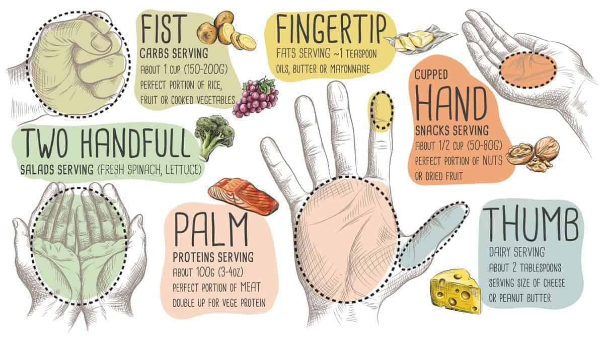 Infographic showing food portion sizes with a person's hand