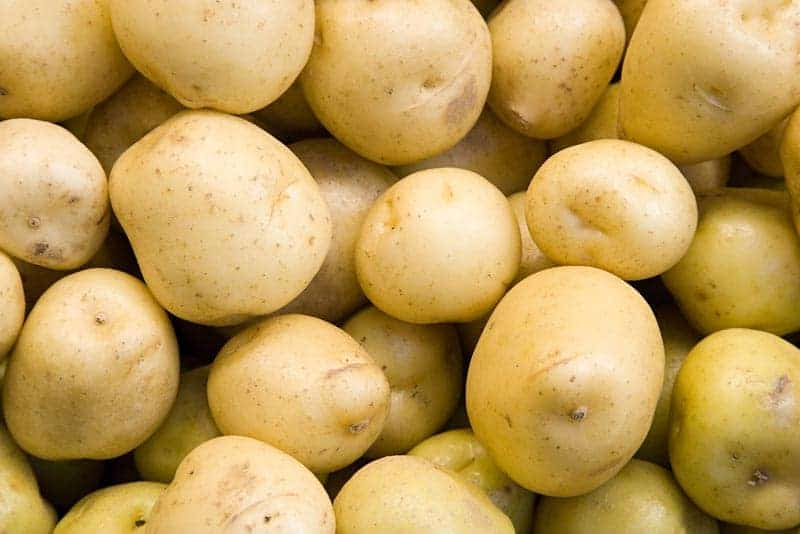yukon gold potatoes best healthy carbs