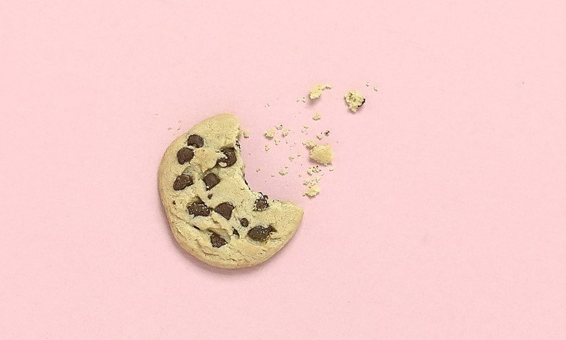 simgle chocolate chip cookie on pink background